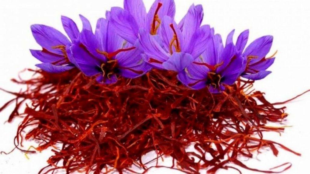 استفاده از زعفران در طب سنتی