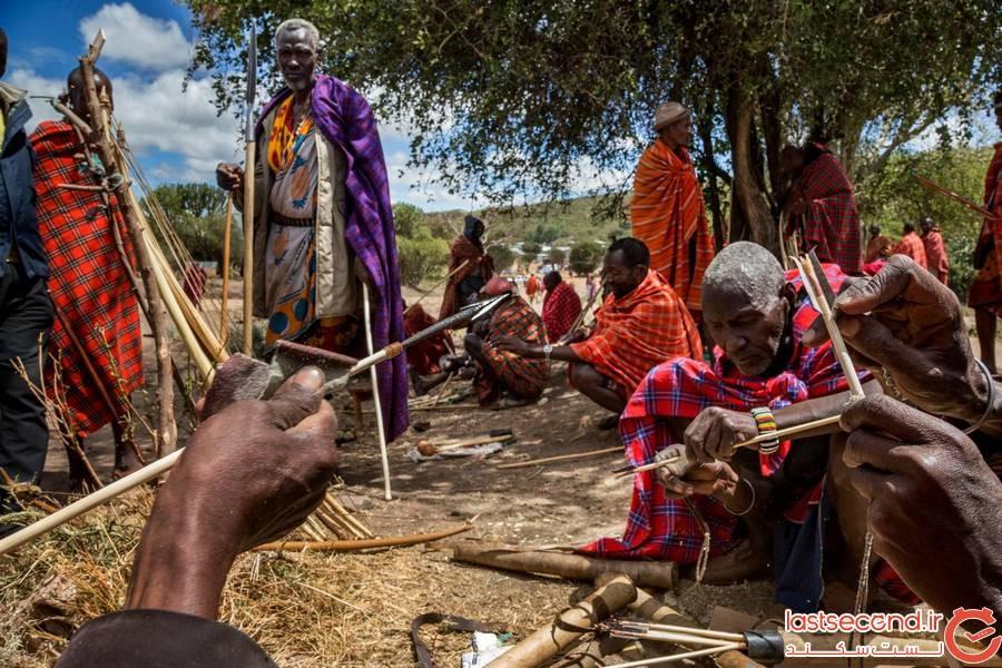 گیاه درمانی آفریقا