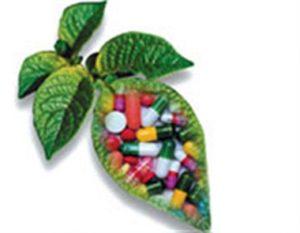دارو گیاهی ارومیه