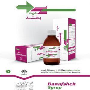 شربت بنفشه ، ضد التهاب گلو بوده و درمان تب، درمان سرفه ، خلط آور، نرم کننده گلو و رفع گلو درد می باشد.ترکیبات دیگر فرآورده به دانه ، گل ختمی ، صمغ عربی، کتیرا و خیار می باشد.